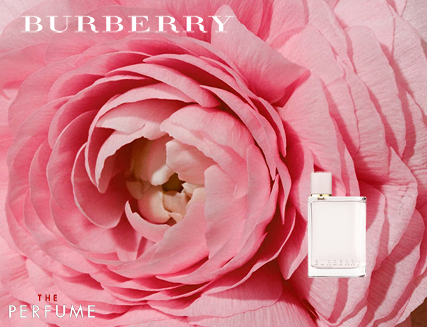burberry-her-edp