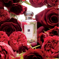 jo-malone-red-rose-edp
